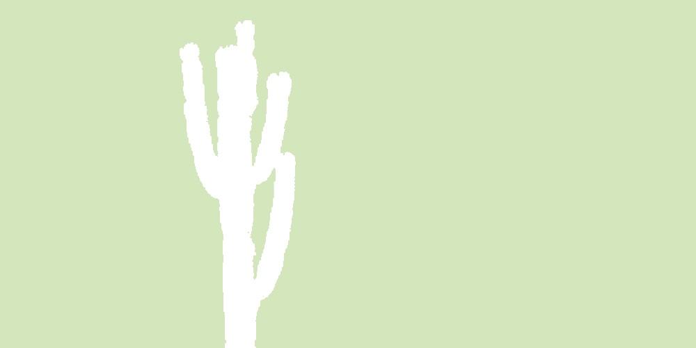 Mint-Cacti-1-1000px-X-500px
